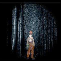 bosque interior 01